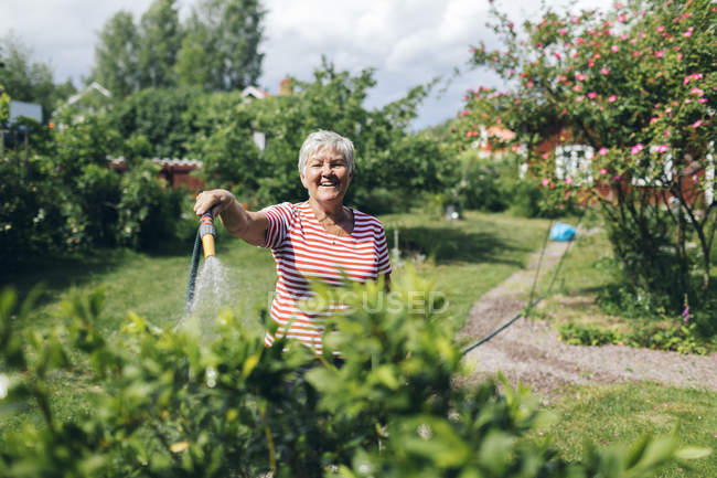 Senior woman watering garden with hose — Stock Photo