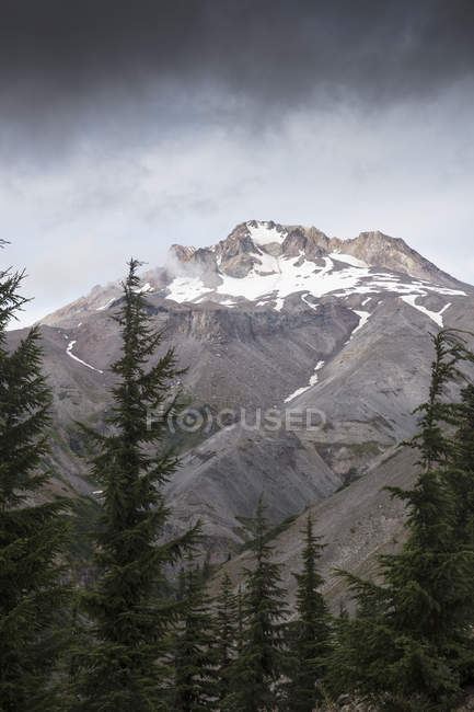 Peak in Mount Hood National Forest in Oregon — Stock Photo