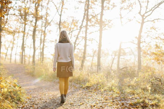 Femme marchant dans la forêt automnale — Photo de stock