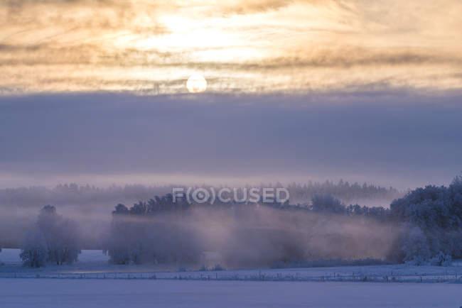 Faisceau de soleil au-dessus d'un champ de brouillard, foyer sélectif — Photo de stock