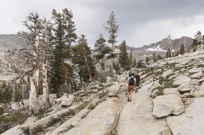 Мандрівники в національному парку Секвоя (Каліфорнія). — стокове фото