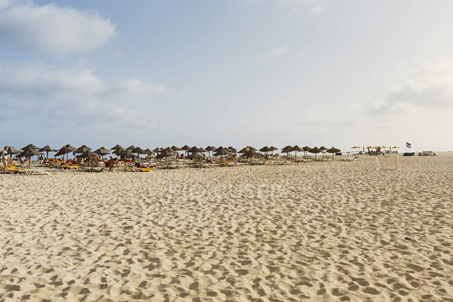 Umbrellas on beach in Cape Verde — Stock Photo