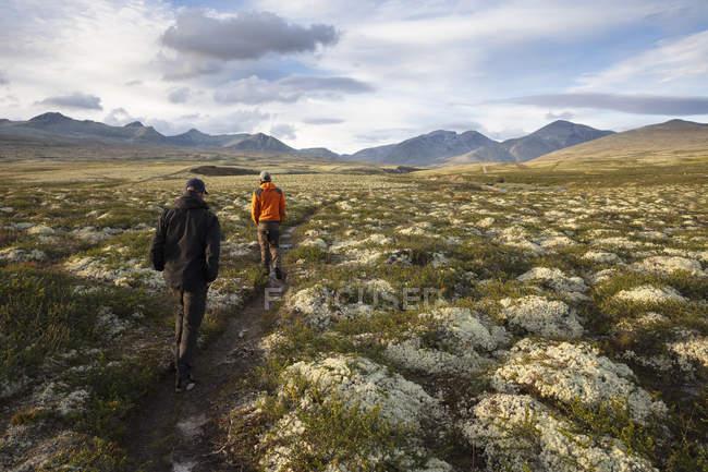 Мужчины, совершающие пешие прогулки в национальном парке Ронни, Норвегия — стоковое фото