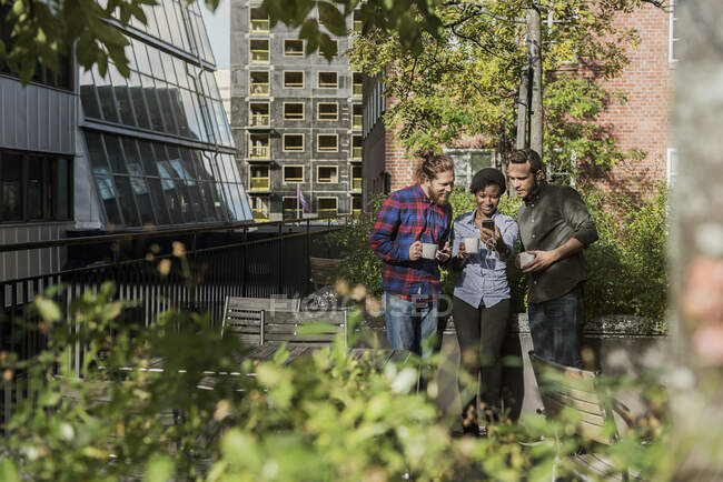 Friends looking at smartphone outdoors at sunny day — Stock Photo