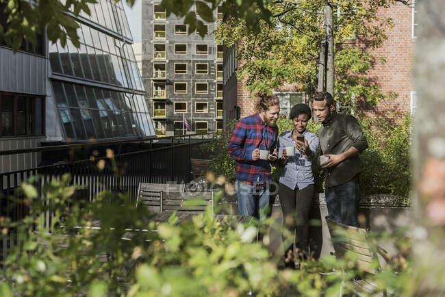 Des amis regardent un téléphone intelligent en plein air par une journée ensoleillée — Photo de stock