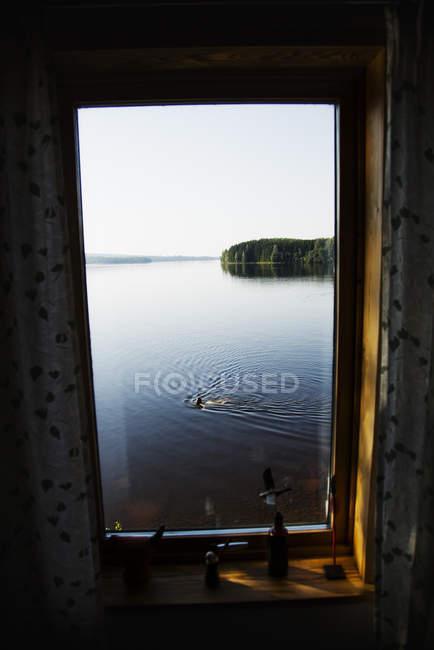 Вид на жінку, що плаває в озері через вікно. — стокове фото