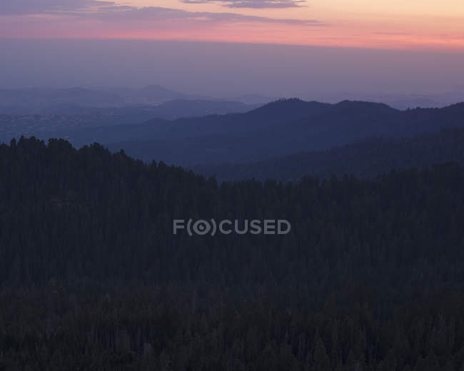 Sequoia National Park at sunset in California — Stock Photo