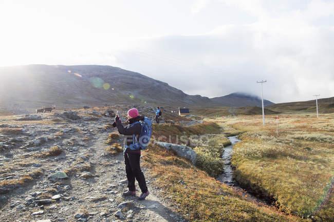 Женщина, делающая фото в поле, выборочный фокус — стоковое фото