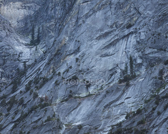 Rock in Kings Canyon National Park em Califórnia — Fotografia de Stock