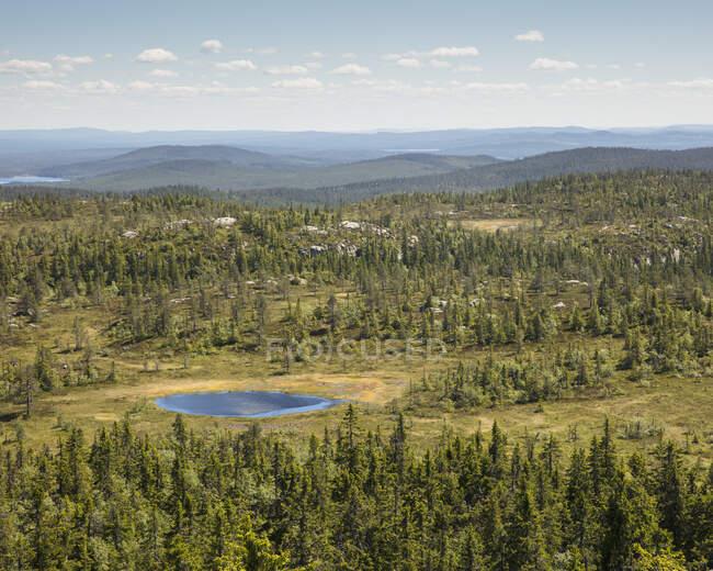 Природний заповідник Тандовала (Швеція). — стокове фото