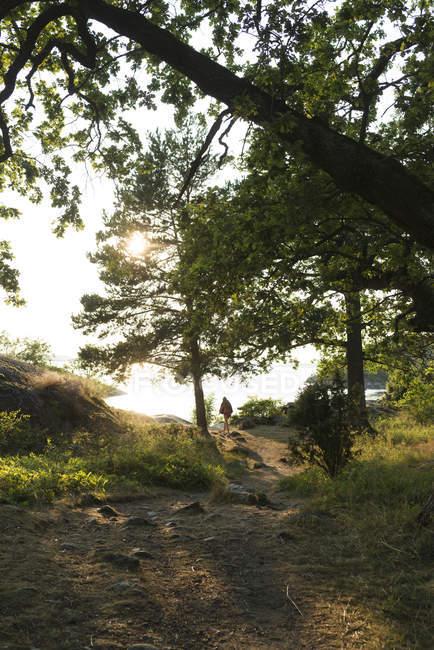 Femme en forêt à un point de mire sélectif éloigné — Photo de stock