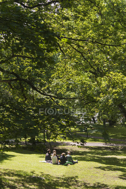 People having picnic in park, selective focus — Stock Photo