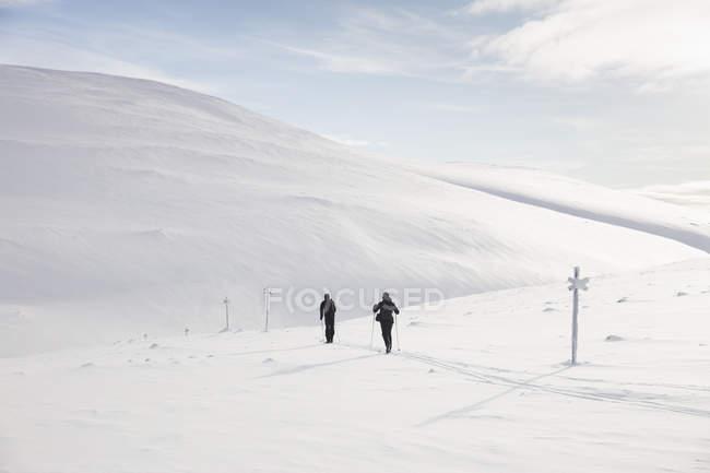 Esquí masculino, enfoque selectivo - foto de stock