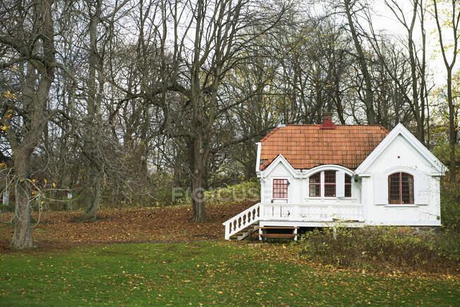 Белый дом с голыми деревьями — стоковое фото