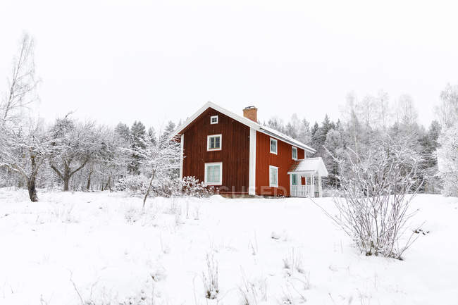 Red farmhouse in snow at winter — Stock Photo