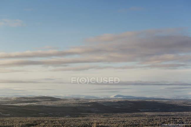 Мальовничий краєвид хмар над лісом. — стокове фото