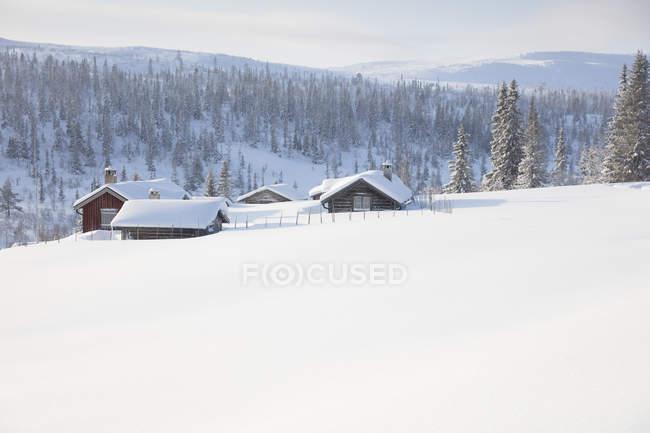 Каюты из дерева, покрытые снегом — стоковое фото
