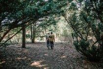 Rückansicht des jungen Paares Wandern in Wäldern — Stockfoto