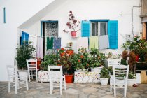 Scenic view of plants and chairs on street of Paros, Aegean Sea, Cyclades, Greece — Stock Photo