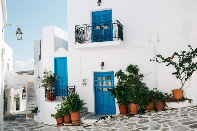 Vue panoramique de l'architecture de la ville, Paros, mer Égée, Cyclades, Grèce — Photo de stock