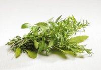 Varie erbe su superficie bianca — Foto stock