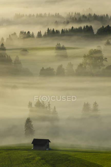 Paisaje de niebla en el Auerberg, Baviera, Alemania - foto de stock