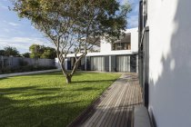 Sunny modern, luxury home showcase exterior yard with tree — Stock Photo