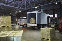 Caminhões e paletes de papelão no armazém de distribuição de carga da doca — Fotografia de Stock