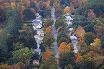 Arbres de l'automne entre le quartier de banlieue — Photo de stock