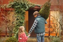 Father and daughter carrying Christmas tree toward house — Stock Photo