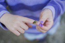 Закрытая девушка с седлом на руке, держащая в руках фиолетовый цветок — стоковое фото