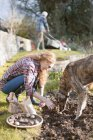 Woman with dog gardening planting bulbs in dirt in autumn garden — Stock Photo