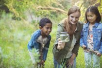 Студентів і викладачів, вивчаючи комах в jar — стокове фото