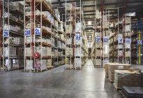 Mercadoria empilhada nas prateleiras em corredores etiquetados no armazém da distribuição — Fotografia de Stock