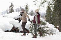 Albero di Natale fresco trascinantesi paio vicino neve coperto woodpile — Foto stock