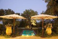 Garden surrounding lap pool at dusk — Stock Photo