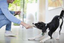 Hombre jugando con el perro en la cocina en el hogar moderno - foto de stock