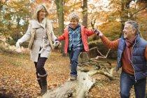 Família feliz andando no log no parque — Fotografia de Stock