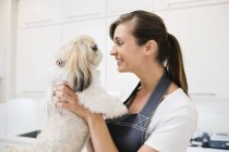 Caucasian groomer holding dog in office — Stock Photo