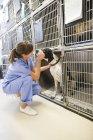 Donna caucasica vet mettendo cane in canile — Foto stock