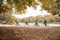 Семейные велосипеды в парке — стоковое фото