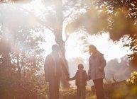 Silhueta de família caminhando juntos no parque — Fotografia de Stock