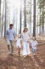 Família feliz de mãos dadas e caminhando em bosques ensolarados — Fotografia de Stock