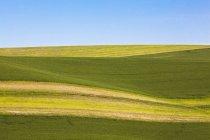 Sol e sombra sobre colinas rolantes — Fotografia de Stock