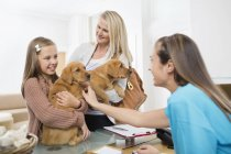 Propriétaires amenant des chiens à la chirurgie vétérinaire — Photo de stock