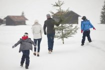 Rear view of family carrying fresh Christmas tree in snowy field — Stock Photo