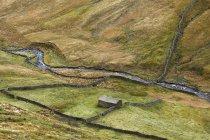 Пастбища в сельских ландшафтов в дневное время — стоковое фото