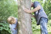 Père et fils furtivement autour d'arbre — Photo de stock