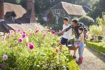 Family picking flowers in sunny garden — Stock Photo