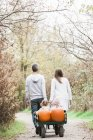 Parents pulling toddler children and pumpkins on wagon in park — Stock Photo